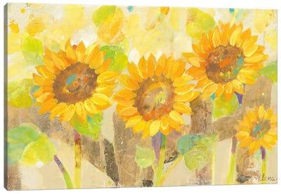 Turn To The Sun Canvas Art Print