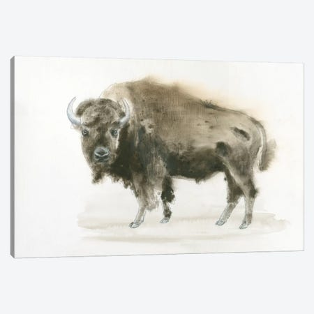 Buffalo Bill Canvas Print #WAC4424} by James Wiens Canvas Wall Art
