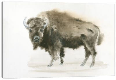 Buffalo Bill Canvas Art Print