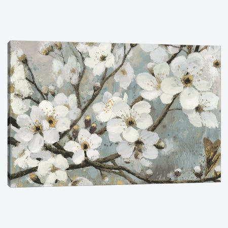 Cherry Blossoms I Canvas Print #WAC4426} by James Wiens Canvas Artwork