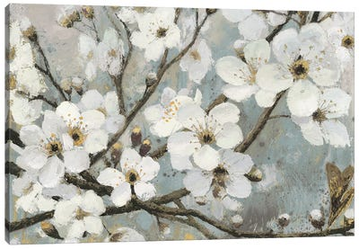 Cherry Blossom Canvas Wall Art cherry blossoms canvas wall art — icanvas