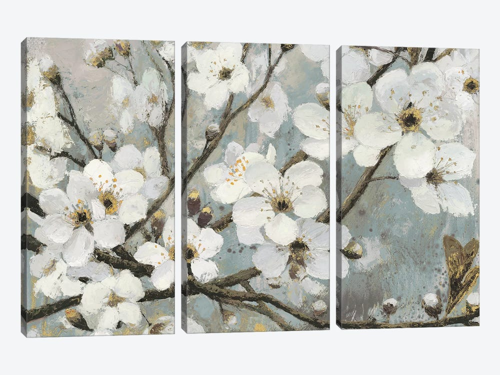 Cherry Blossoms I by James Wiens 3-piece Canvas Print
