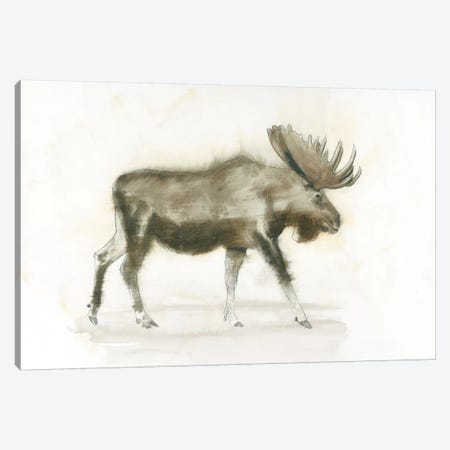 Dark Moose Canvas Print #WAC4427} by James Wiens Canvas Art