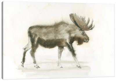 Dark Moose Canvas Art Print