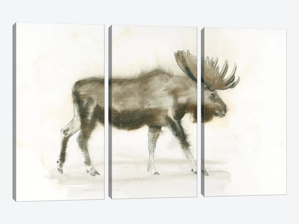 Dark Moose by James Wiens 3-piece Canvas Art