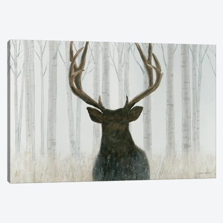 Into The Forest Canvas Print #WAC4430} by James Wiens Canvas Wall Art