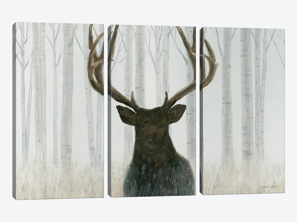 Into The Forest by James Wiens 3-piece Canvas Wall Art