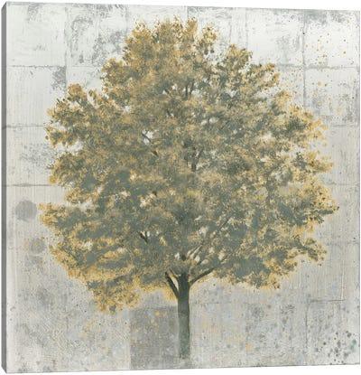 Neutrality Gold Canvas Print #WAC4436