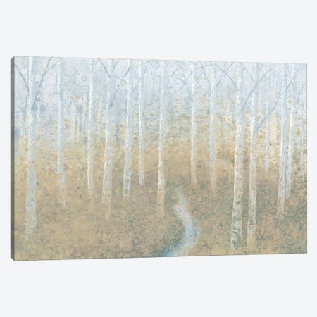 Silver Waters Canvas Print #WAC4439} by James Wiens Canvas Art