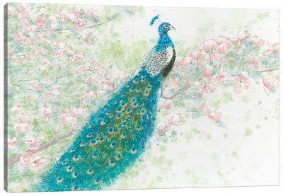 Spring Peacock I Pink Flowers Canvas Art Print