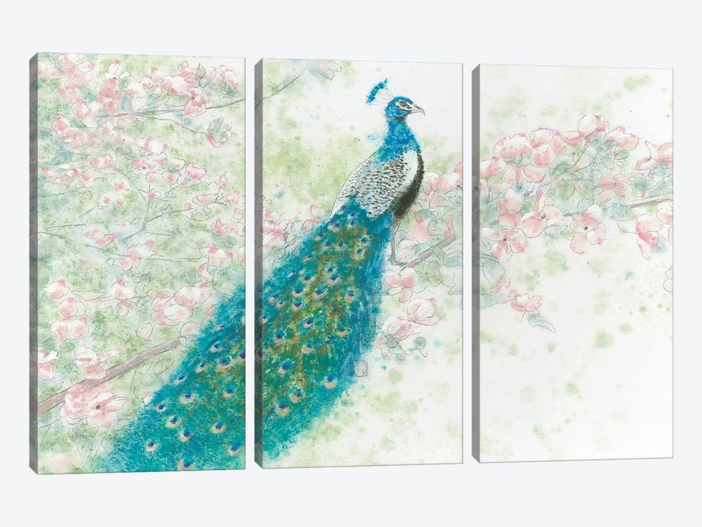 Spring Peacock I Pink Flowers by James Wiens 3-piece Canvas Art Print