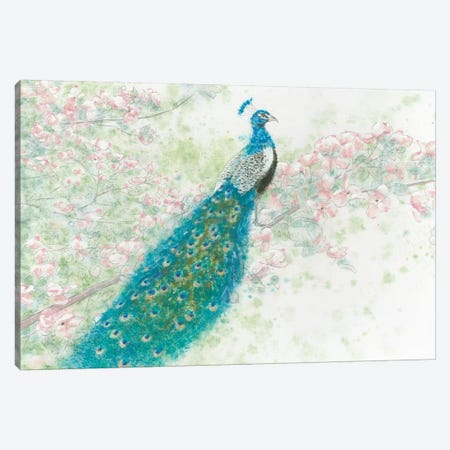 Spring Peacock I Pink Flowers Canvas Print #WAC4440} by James Wiens Canvas Art Print