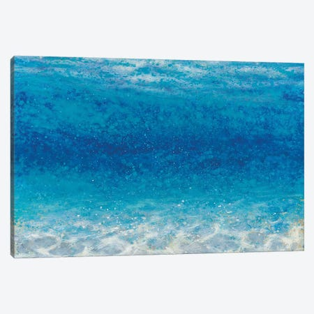Underwater I Crop Canvas Print #WAC4441} by James Wiens Canvas Art Print