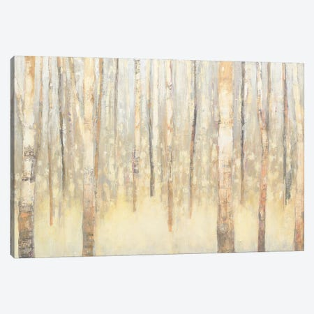 Birches In Winter I Canvas Print #WAC4447} by Julia Purinton Canvas Wall Art
