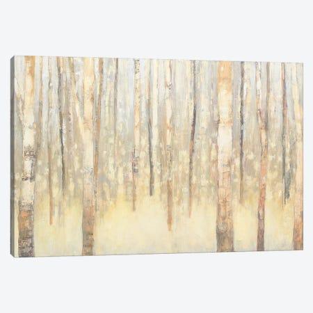 Birches In Winter I Canvas Print #WAC4447} by Julia Purinton Canvas Wall Art