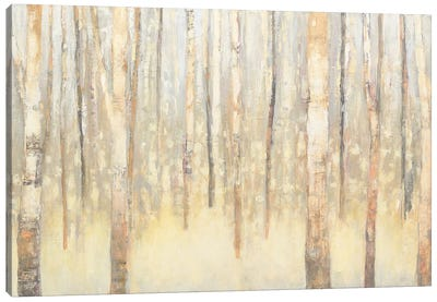 Birches In Winter I Canvas Art Print
