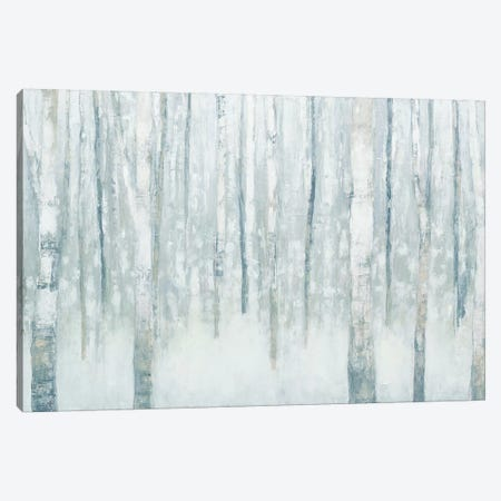 Birches In Winter II Canvas Print #WAC4448} by Julia Purinton Art Print