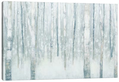 Birches In Winter II Canvas Art Print