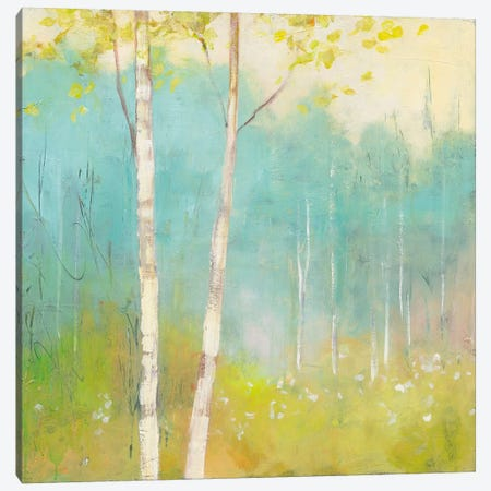 Spring Fling I Canvas Print #WAC4450} by Julia Purinton Canvas Art