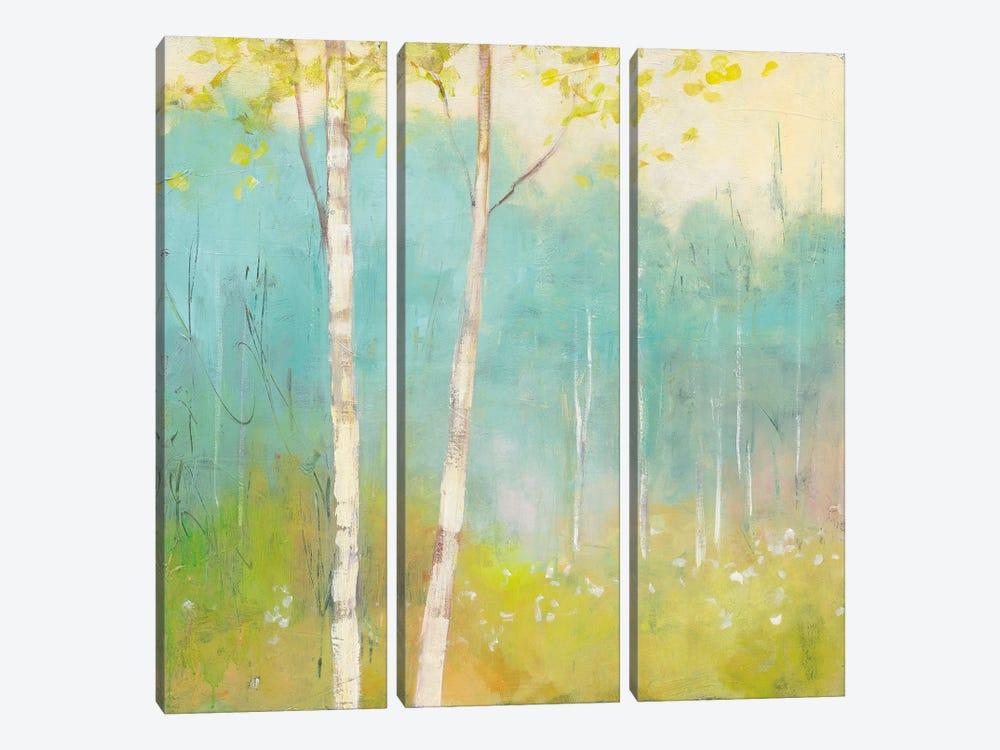 Spring Fling I by Julia Purinton 3-piece Canvas Art