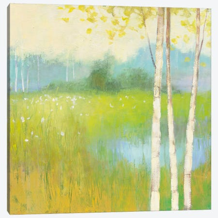 Spring Fling II Canvas Print #WAC4451} by Julia Purinton Canvas Artwork