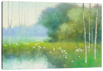 Spring Midst Canvas Art Print