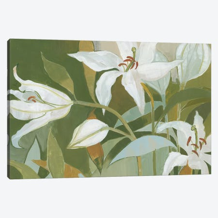 Cut Flowers II Canvas Print #WAC4454} by Kathrine Lovell Art Print