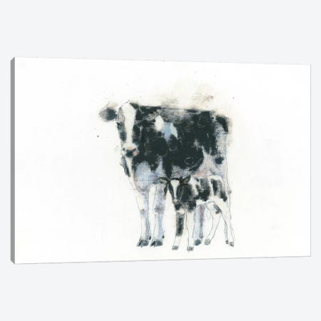 Cow And Calf Canvas Print #WAC4465} by Emily Adams Canvas Art