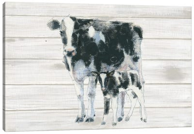 Cow And Calf On Wood Canvas Art Print