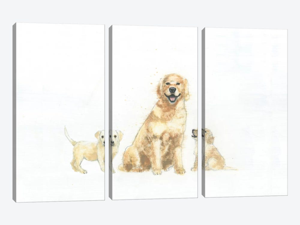 Dog And Puppies by Emily Adams 3-piece Canvas Artwork