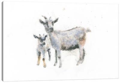 Goat And Kid Canvas Print #WAC4468