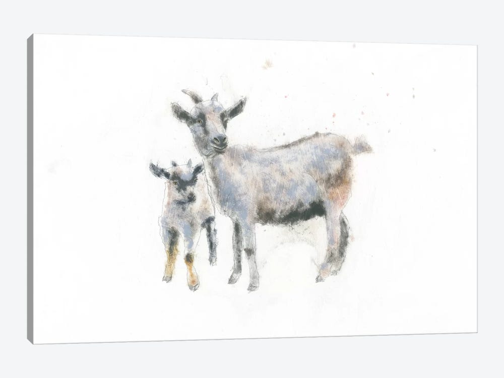 Goat And Kid by Emily Adams 1-piece Canvas Art Print
