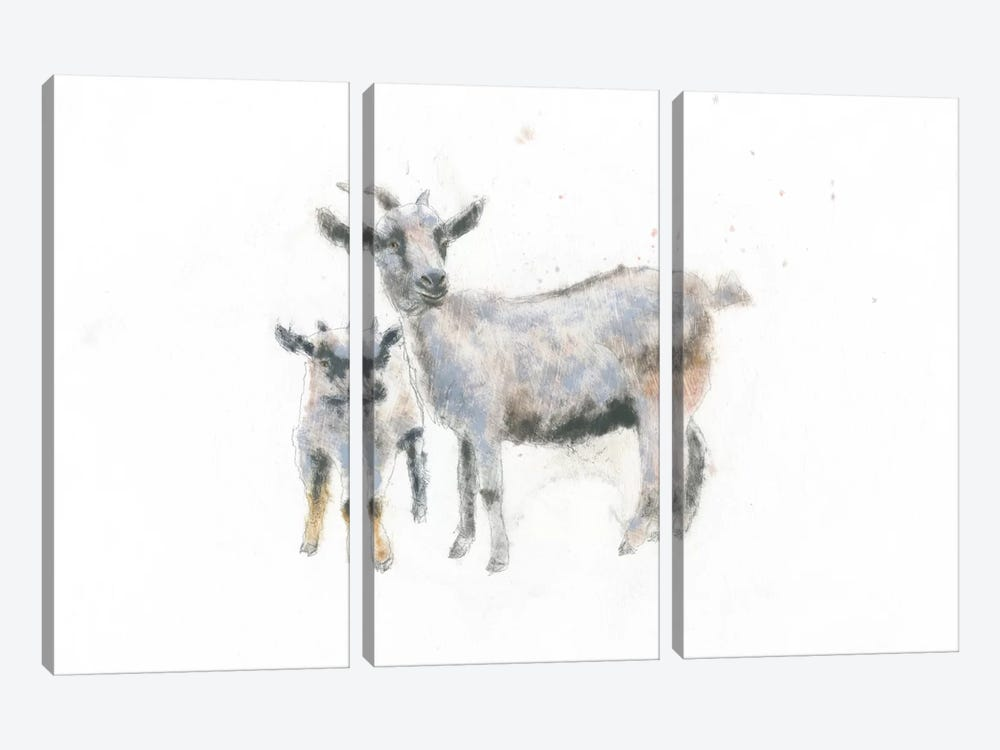 Goat And Kid by Emily Adams 3-piece Canvas Print