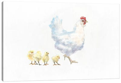 Hen And Chickens Canvas Art Print