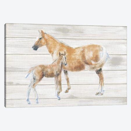 Horse And Colt On Wood Canvas Print #WAC4471} by Emily Adams Canvas Art