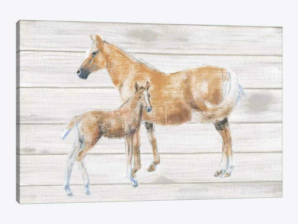 Horse And Colt On Wood by Emily Adams 1-piece Art Print