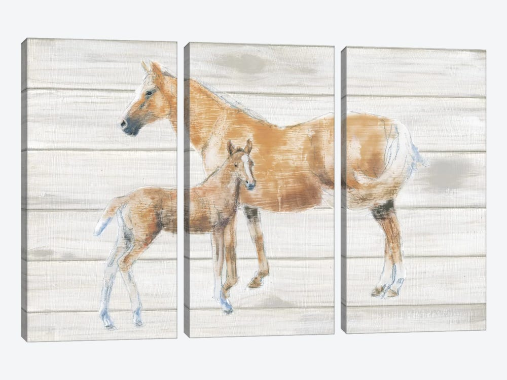 Horse And Colt On Wood by Emily Adams 3-piece Canvas Print