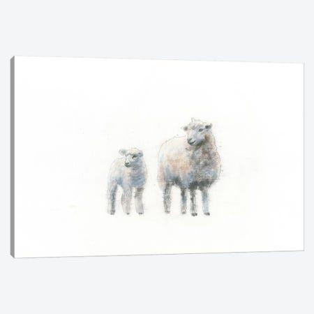 Sheep And Lamb Canvas Print #WAC4473} by Emily Adams Canvas Art