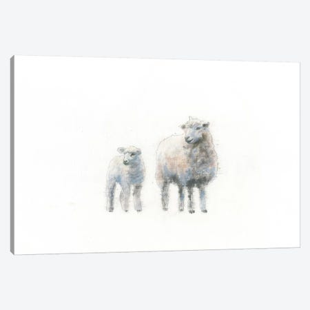 Sheep And Lamb Canvas Print #WAC4473} by Emily Adams Canvas Art