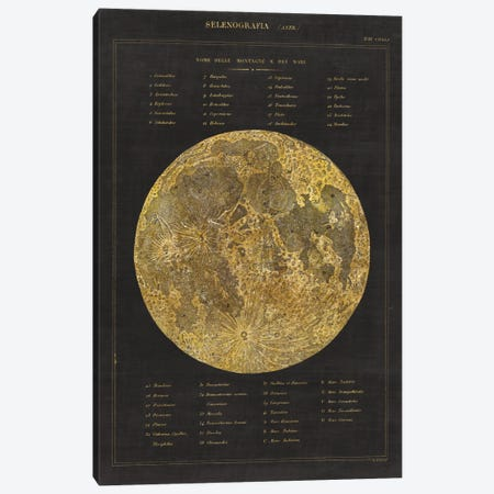 Astronomical Chart I Canvas Print #WAC4477} by Wild Apple Portfolio Art Print