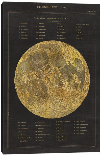 Astronomical Chart I Canvas Art Print