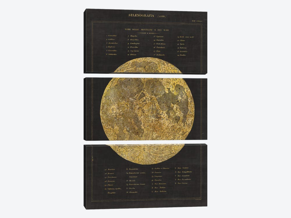Astronomical Chart I by Wild Apple Portfolio 3-piece Canvas Art Print