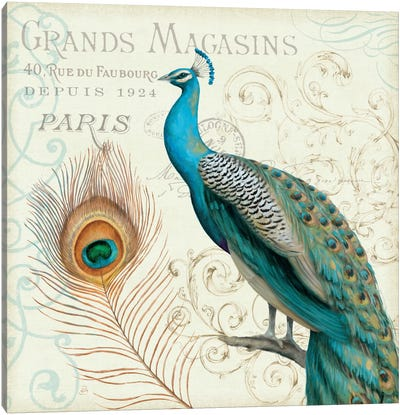Majestic Beauty II  Canvas Print #WAC447