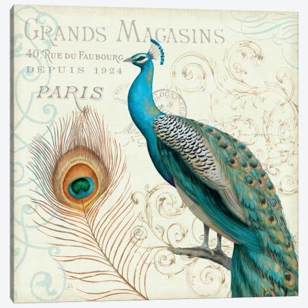 Majestic Beauty II  Canvas Print #WAC447} by Daphne Brissonnet Canvas Art Print