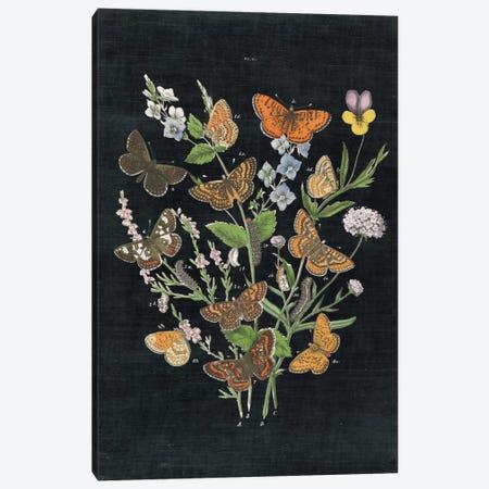 Butterfly Bouquet I Canvas Print #WAC4489} by Wild Apple Portfolio Art Print