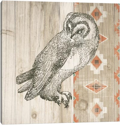 Natural History Lodge Southwest I Canvas Art Print