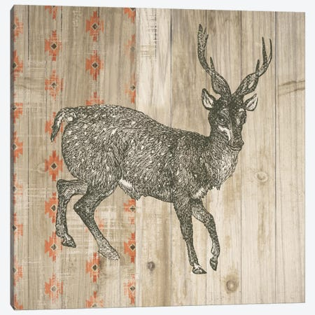 Natural History Lodge Southwest III Canvas Print #WAC4510} by Wild Apple Portfolio Art Print