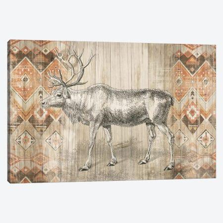 Natural History Lodge Southwest IX Canvas Print #WAC4511} by Wild Apple Portfolio Canvas Art Print