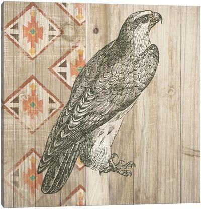 Natural History Lodge Southwest V Canvas Art Print