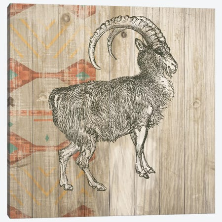 Natural History Lodge Southwest VII Canvas Print #WAC4515} by Wild Apple Portfolio Canvas Wall Art